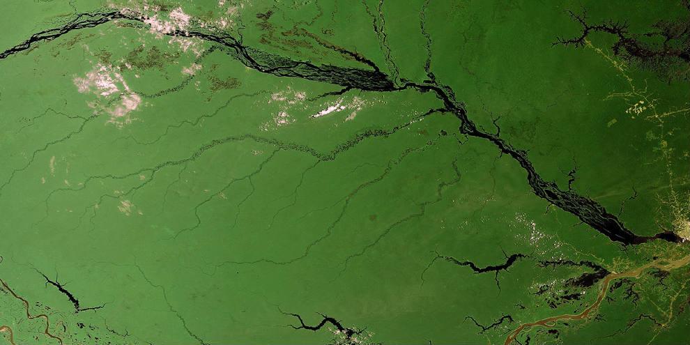 ESA - Amazon - BANNER
