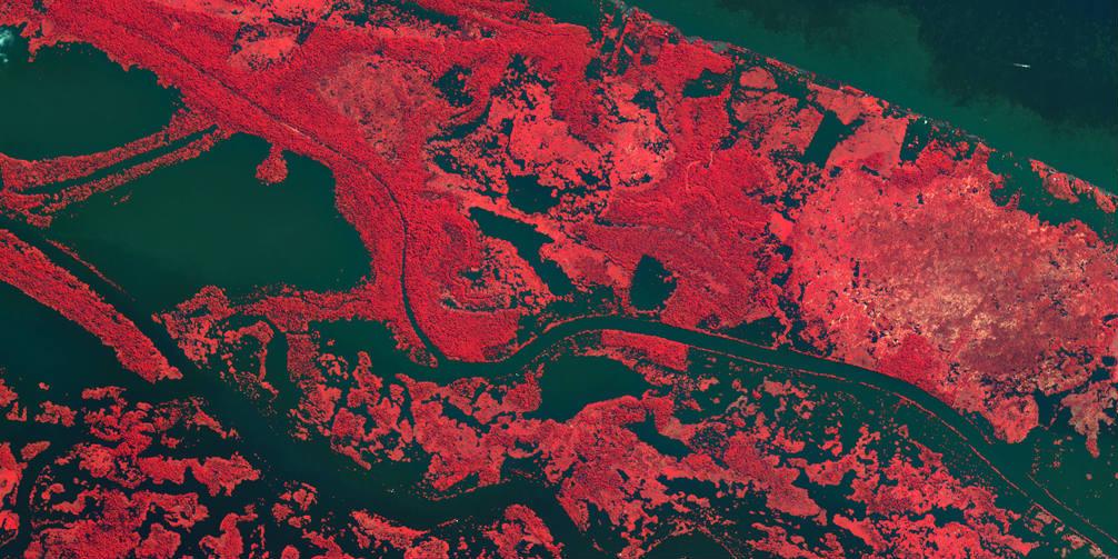 ESA - Amazon - false colour - BANNER
