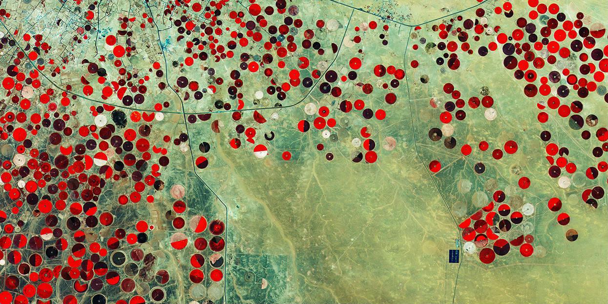 ESA - Desert fields