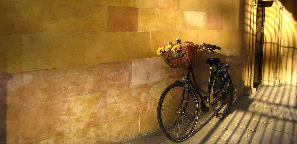University flikcr - Lena Borise - The Clare College bike - carosel