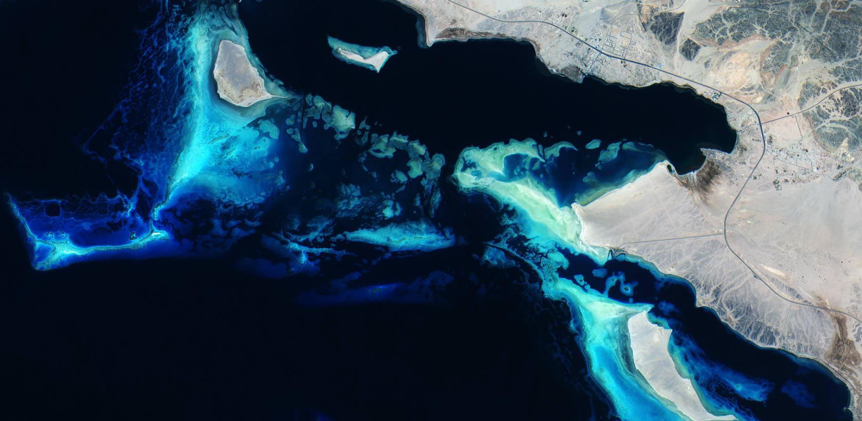 ESA - Deep blue reefs - BANNER